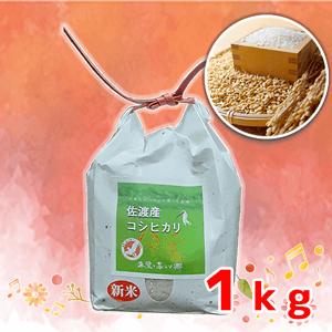 佐渡産 コシヒカリ 1kg
